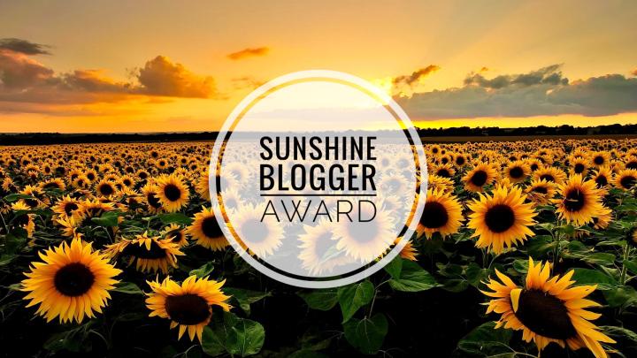 sunshine-blogger-banner